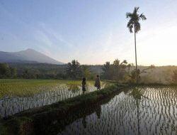 Selain Rinjani, 4 Destinasi Ini Wajib Disambangi di Lombok