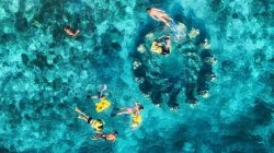 Spot snorkeling di Gili Meno Kabupaten Lombok Utara. Photo: Shuterstock